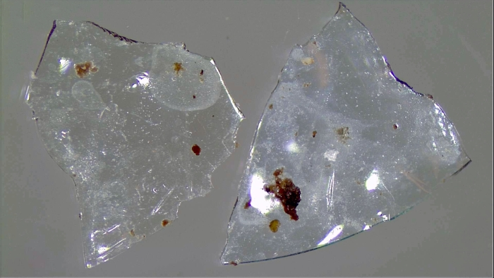 Flushed contact lenses add to burden of plastic waste