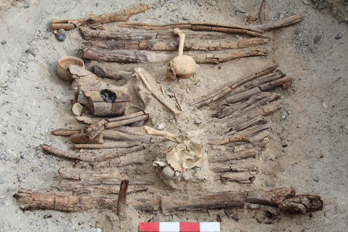 High times in ancient China revealed in funerary cannabis discovery