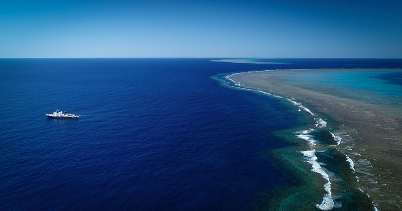 Coral reef taller than the Empire State Building discovered off Queensland