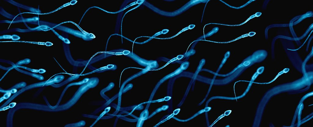 Healthy sperm: Improving your fertility - Mayo Clinic